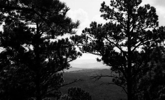 Random Photos & Hiking with Delta 100 (35mm)