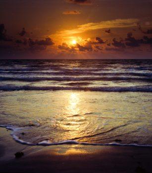 Photos from the Beach